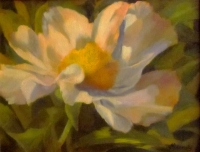 F.simple-peony-oil-16-x-12-private-collection_brt