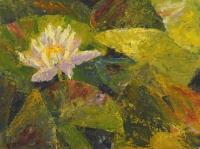 D.carmody_m_the-lily-pad-pond_sm_brt_0
